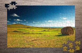 Puzzle cu baloți
