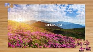 Puzzle cu peisaj floral