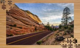 Puzzle Road